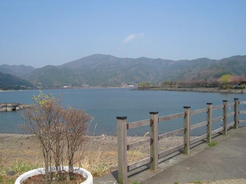 穏やかに晴れた河口湖