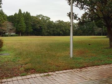 昭和の森フォレストビレッジの多目的広場